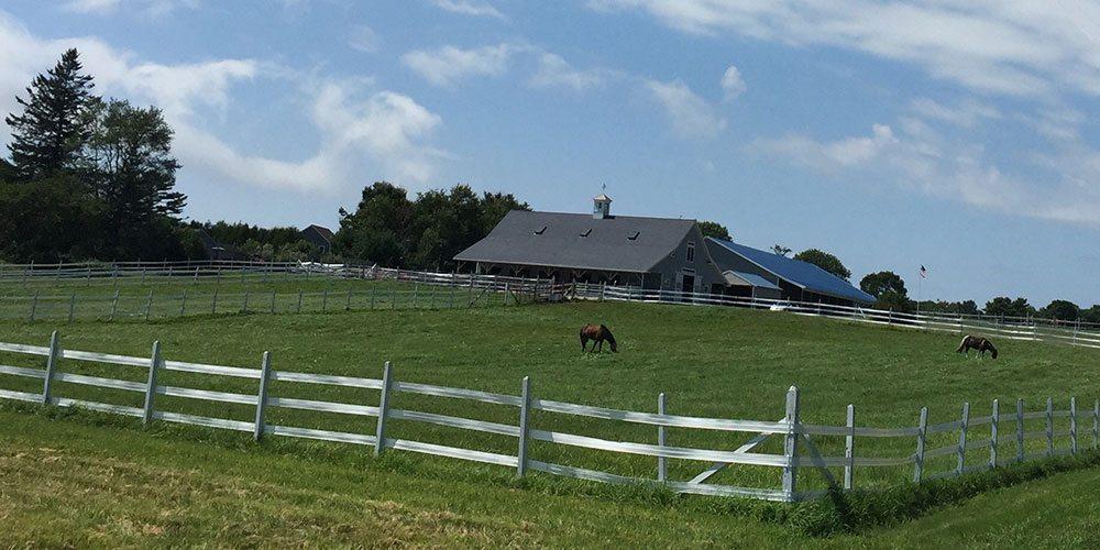 Brook Ledge Farm
